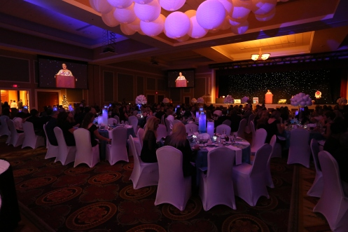 Bras for the Cause Gala 2014.6