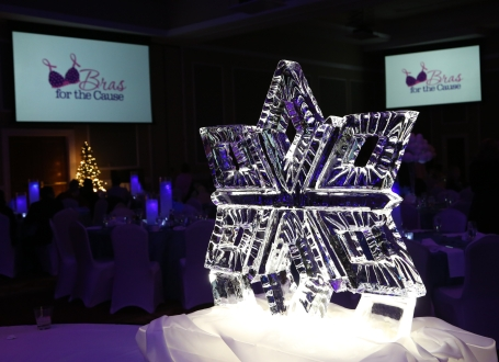 Bras for the Cause Gala 2014.7